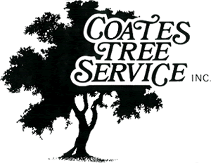Coates Tree Service, Santa Fe, NM